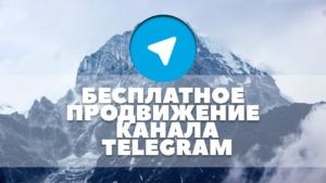 Как бесплатно раскрутить канал в телеграм